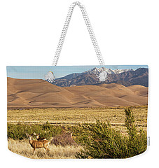 Weekender Tote Bag featuring the photograph Deer And The Colorado Sand Dunes by James BO Insogna