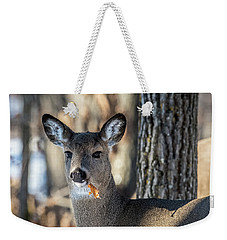 Weekender Tote Bag featuring the photograph Deer At The Salad Bar by Paul Freidlund