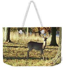 Deer At Valley Forge Weekender Tote Bag