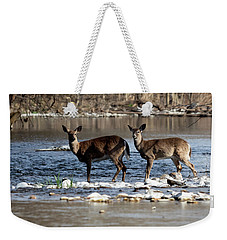Deer Crossing 1 Weekender Tote Bag