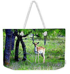 Deer Curiosity Weekender Tote Bag