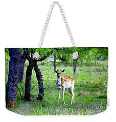 Deer Curiosity Weekender Tote Bag