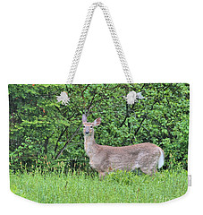 Deer Weekender Tote Bag by Debbie Stahre