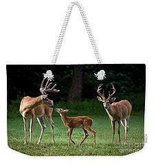 Weekender Tote Bag featuring the photograph Deer Family Portrait by Andrea Silies