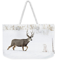 Weekender Tote Bag featuring the photograph Deer In The Snow by Rebecca Margraf
