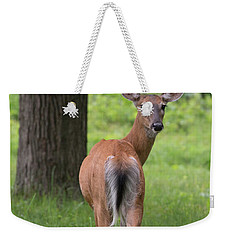 Deer Looking Back Weekender Tote Bag