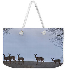 Deer Me Weekender Tote Bag by Richard Engelbrecht
