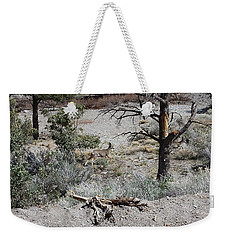 One Deer On A Dry Mountain Weekender Tote Bag