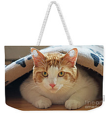 Weekender Tote Bag featuring the photograph Delectable Companion.. by Nina Stavlund