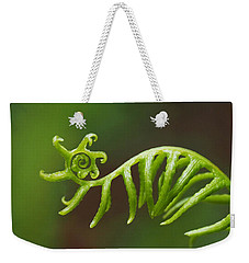 Delicate Fern Frond Spiral Weekender Tote Bag by Rona Black