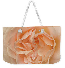 Weekender Tote Bag featuring the photograph Delicate Rose by Jacqi Elmslie