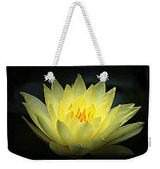 Delicate Water Lily Weekender Tote Bag by Lori Seaman