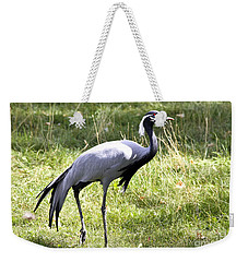 Demoiselle Crane Weekender Tote Bag by Teresa Zieba