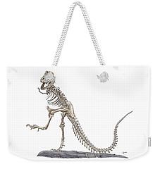 Denvers Dancing T Rex Weekender Tote Bag