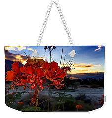 Weekender Tote Bag featuring the photograph Desert Bird Of Paradise by Chris Tarpening