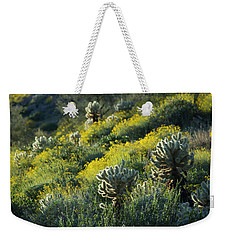Desert Color And Light Weekender Tote Bag by Sue Cullumber