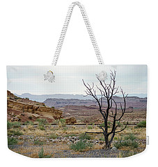 Weekender Tote Bag featuring the photograph Desert Colors by Margaret Pitcher