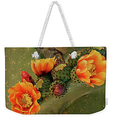 Weekender Tote Bag featuring the photograph Desert Flame by Lucinda Walter