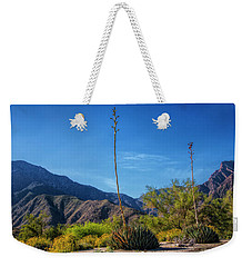 Weekender Tote Bag featuring the photograph Desert Flowers In The Anza-borrego Desert State Park by Randall Nyhof