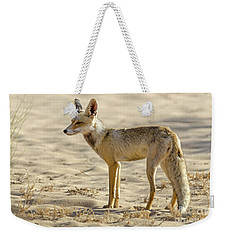 Weekender Tote Bag featuring the photograph desert Fox 02 by Arik Baltinester