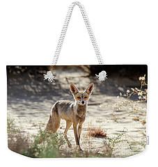 Weekender Tote Bag featuring the photograph Desert Fox by Arik Baltinester