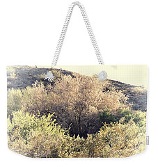 Desert Ironwood Afternoon Weekender Tote Bag