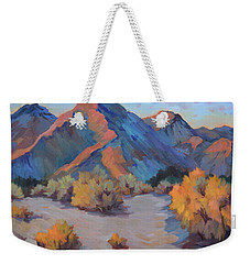 Weekender Tote Bag featuring the painting Desert Light by Diane McClary