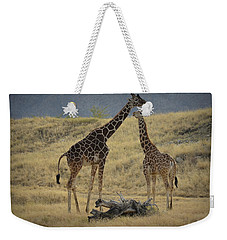 Weekender Tote Bag featuring the photograph Desert Palm Giraffe by Guy Hoffman