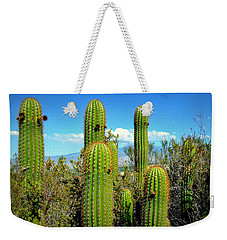 Weekender Tote Bag featuring the photograph Desert Plants - All In The Family by Glenn McCarthy