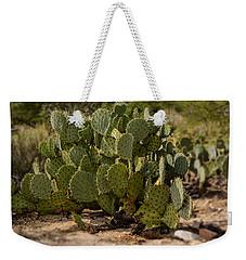 Desert Prickly-pear No6 Weekender Tote Bag