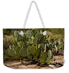 Desert Prickly-pear No6 Weekender Tote Bag