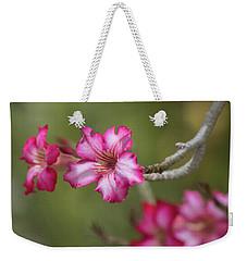 Desert Rose 5964-041118-1 Weekender Tote Bag