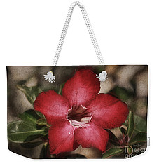 Desert Rose In Daytona Weekender Tote Bag