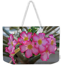 Desert Rose Or Chuanchom Dthb2105 Weekender Tote Bag