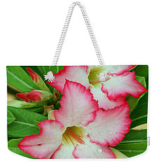 Desert Rose With Buds And Water Weekender Tote Bag