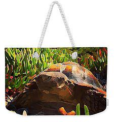 Desert Tortoise Weekender Tote Bag