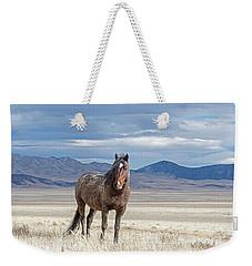 Desert Wild Horse Weekender Tote Bag