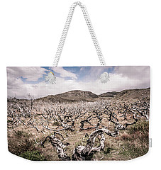 Weekender Tote Bag featuring the photograph Desolation by Andrew Matwijec