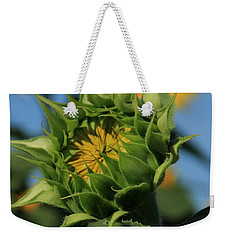 Weekender Tote Bag featuring the photograph Developing Petals On A Sunflower by Chris Berry