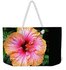 Weekender Tote Bag featuring the photograph Dew-kissed Hibiscus by Sue Melvin