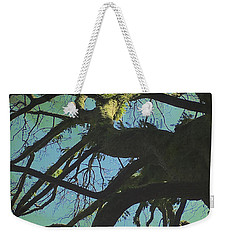 Weekender Tote Bag featuring the photograph Dialogue  by Connie Handscomb