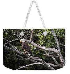 Weekender Tote Bag featuring the photograph Diamond Highway Eagle by Richard Bean