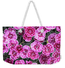 Weekender Tote Bag featuring the photograph Dianthus Gold Fleck by Tim Gainey
