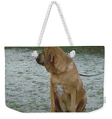 Did You Hear That? Weekender Tote Bag by Val Oconnor