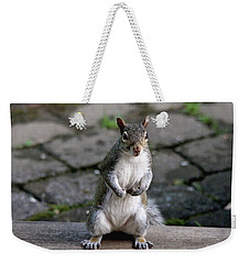 Weekender Tote Bag featuring the photograph Did You Say Peanuts? by Trina Ansel