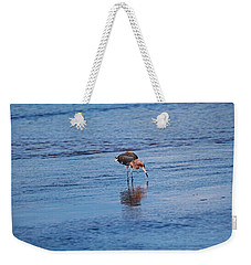 Weekender Tote Bag featuring the photograph Ding Darling's Number One II by Michiale Schneider