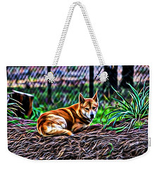 Dingo From Ozz Weekender Tote Bag by Miroslava Jurcik