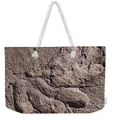 Weekender Tote Bag featuring the photograph Dino Feet by Anne Rodkin