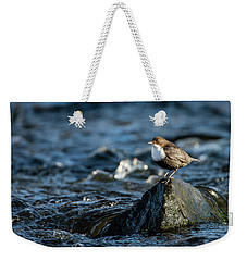 Dipper On The Rock Weekender Tote Bag by Torbjorn Swenelius