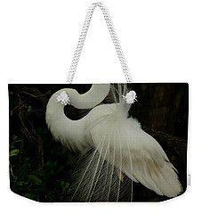 Displaying In The Shadows Weekender Tote Bag by Myrna Bradshaw